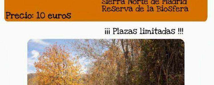 Ruta interpretativa por Horcajuelo de la Sierra<span class=