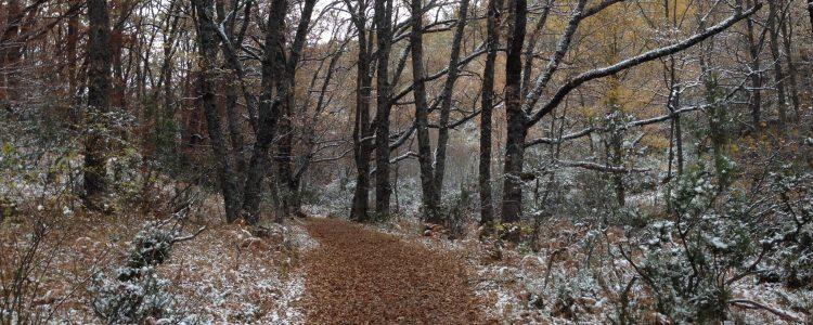 Invierno en la #SierraNorteDeMadrid<span class=