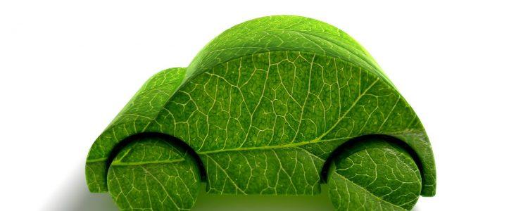 La huella ecológica en TVE2<span class=
