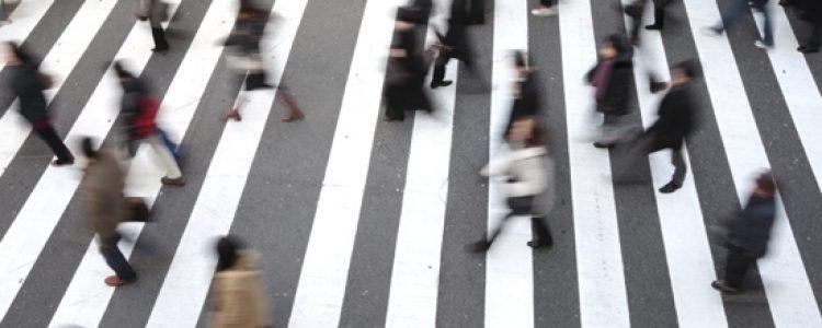 Transport Learning, Proyecto para la formación en movilidad sostenible<span class=