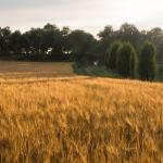 COETUR, el primer Congreso Europeo de Turismo Rural