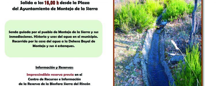 Senda Regueras a Montejo en la sierra norte de Madrid. El 4 abril<span class=