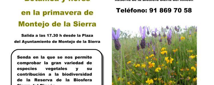 Senda especial de botánica y flores en la Biosfera Sierra del Rincón<span class=