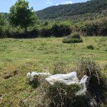 Mantengamos limpios los paisajes naturales