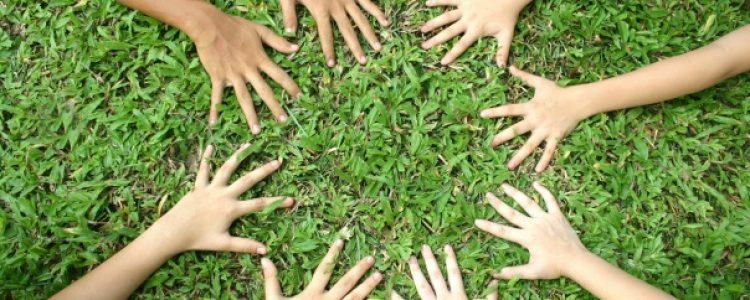 La importancia de la economía social