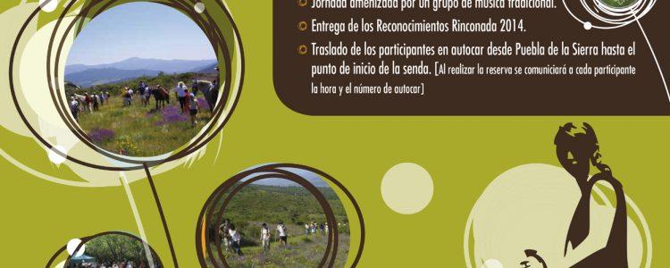 Rinconada 2014