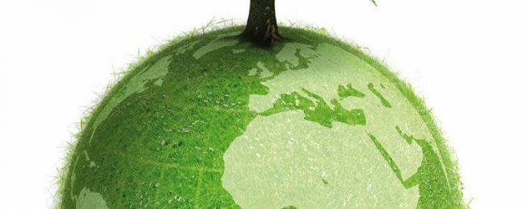 Día Mundial del Medio Ambiente #DMMA2014<span class=