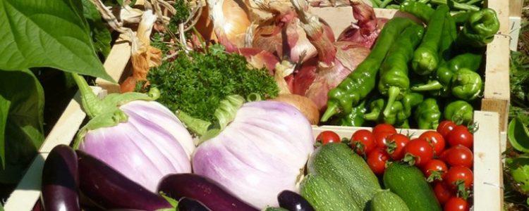 La ecogastronomía o cómo practicar una cocina sostenible
