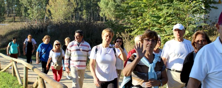 Madrid y las agencias de viajes promocionan la región como destino entre los mayores de 60<span class=