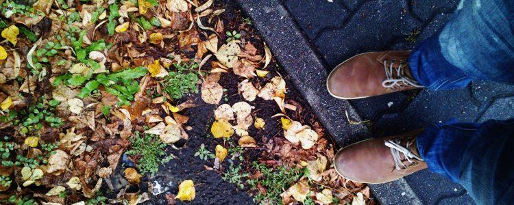 El otoño depende de la llegada de la primavera anterior<span class=