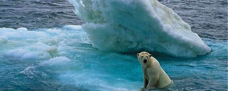 36 premios Nobel exigen actuar contra el cambio climático<span class=