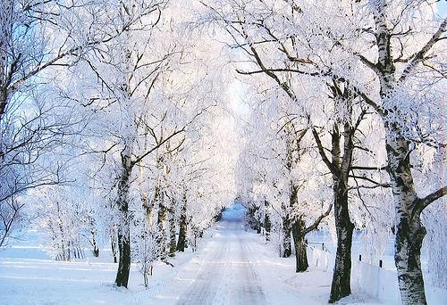 Como hacer fotos de nieve