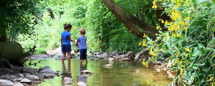 Disfruta de la naturaleza con niños<span class=