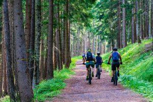 Las opciones de cicloturismo que brinda Sierra Norte Madrid están dirigidas a todo tipo de públicos.